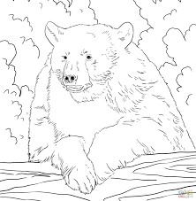 Click The American Black Bear Portrait Coloring Pages To View Printable