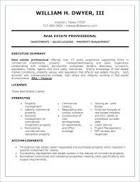 Project Management Executive Summary Template Investment Sheet