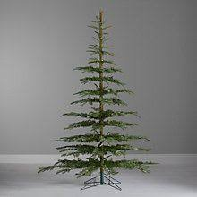 Buy John Lewis Argyle Green Fir Christmas Tree 8ft I HAVE TO THIS