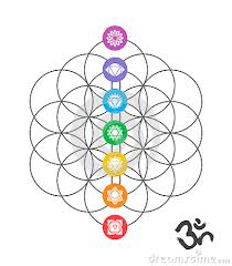 flower of life Google Search sacred geometry