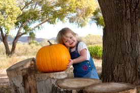Pumpkin Patch Yuma Az Hours by Find Corn Mazes In Prescott Valley Mortimer Family Farms In