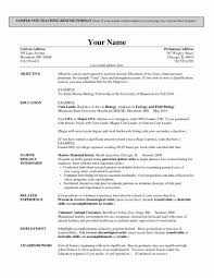 Functional Resume Template New Microsoft Word Templates For Stu Large Size