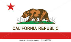 California State National Flag Vector EPS8