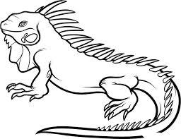 Iguana Animal Coloring Page