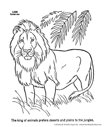 Male Lion Coloring Page