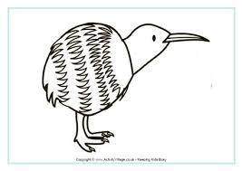 Kiwi Colouring Page 2