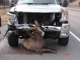 Chevy Vs. RAM - DodgeTalk : Dodge Car Forums, Dodge Truck Forums And ...