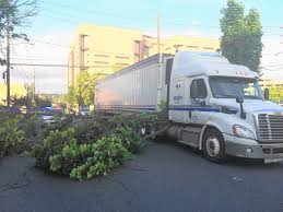 Allentown Tree Snags Truck, Snaps And Blocks Linden Street - The ... Vcentmarolandscaping Pictures Jestpiccom United Fniture Industries Okolona Ms Rays Truck Photos April 30 2018563 Loaded In Fort Worth Texas Youtube Page 172 Grammycom Sygma Network Hit And Run Accident Tyler Tx Michael Cereghino Avsfan118s Most Teresting Flickr Photos Picssr The Lone Star State I27 Amarillo Plainview Pt 5 Slh Transport Inc Kingston On Sygma Jobs Linkedin Heavy Duty Trucking 18 Wheeler Vs Kawasaki Zx6r