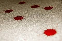 Remove Blood Stain From Carpet by Blog Cleaner Cleaner