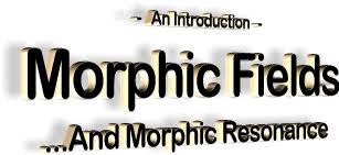 Morphic Fields And Resonance