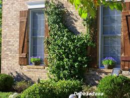 As I Mentioned Nobody Really Needs Outside Shutters Anymore But Old Farmhouse Style Homes Still Have Them And They Go Particularly Well With The Rustic