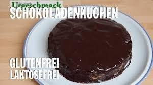 schokoladenkuchen glutenfrei und laktosefrei paläo steinzeiternährung lchf ep 134