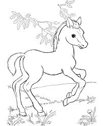 Cute Horse Coloring Pages For Kids