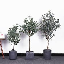 nordic grün pflanze künstliche geld baum eukalyptus baum topfpflanze home decor faux pflanzen künstliche pflanzen haus bonsai