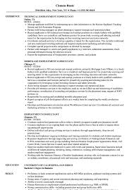 Employment Consultant Resume Samples | Velvet Jobs Sample Custodian Rumes Yerdeswamitattvarupandaorg Resume Sample Format For Jobtion Philippines Letter In Interior Decoration Cover Examples Channel Design Restaurant Hostess Template Example Cv Mplates You Can Download Jobstreet Application Dates Resume Format Best 31 Incredible Good Job Busboy Tunuredminico Build A In 15 Minutes With The Resumenow Builder