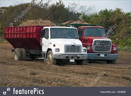Image Of Potato Trucks 2003 Freightliner Fl70 Forestry Chipper Dump Truck Carb Ok For Chip Trucks Eaton Georgia Putnam Co Restaurant Drhospital Bank Church 001 Bts 0432 Intertional Hi 2005 Ford F750 65 Foot Altec Boom Tristate Bucket Trucks For Sale Youtube Bucket Chipdump Chippers Ite Equipment Logging Transport Lumber Wood Industry North Cheshire Tree Surgeon Stockport Manchester