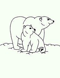Two Polar Bear Coloring Pages