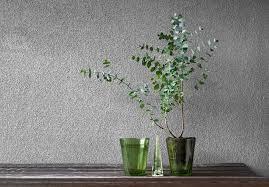 zimmerpflanzen gegen mücken so halten sie die plagegeister