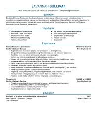 Amazing Human Resources Resume Examples | LiveCareer Eeering Resume Sample And Complete Guide 20 Examples 10 Resume Example 2017 Attendance Sheet Combination For Career Change Awesome The Best Format For Teachers 2016 Sales Samples Hiring Managers Will Notice Example 64 Images Accounting Assistant Internship Services Umn Duluth Nurses 2018 Duynvadernl 8 Examples Letter Setup Tle Teacher Valid Administrative Executive Jwritingscom