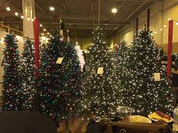 Balsam Christmas Trees Real by San Jose Food Blog Balsam Hill Tree Lot Christmas Event Burlingame