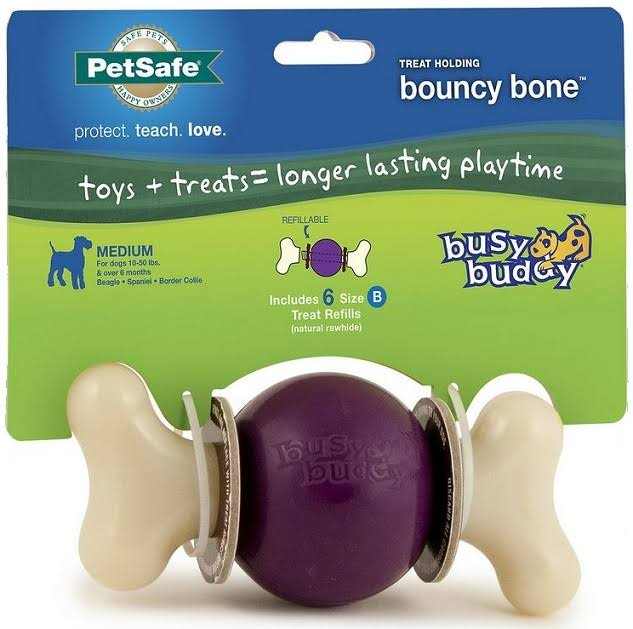 PetSafe Busy Buddy Bouncy Bone Dog Toy - Small