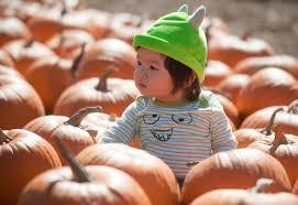 Pumpkin Patch Irvine University by Photos Kids Have A Blast At Irvine Spooktacular Fun Days U2013 Orange