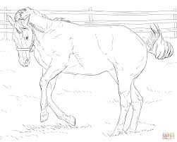 Click The Bucking Horse Coloring Pages To View Printable