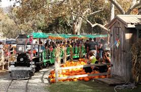 Pumpkin Patch Sf Yelp by Orange County U0027s 5 Best Pumpkin Patches To Find Your Perfect Jack O