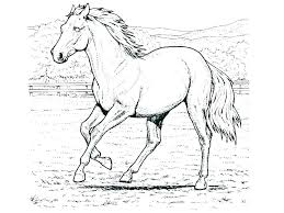 Spirit Horse Coloring Pages Of Horses To Print