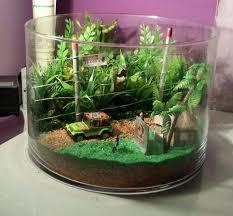 Star Wars Themed Aquarium Safe Decorations by 25 Unique Mini Aquarium Ideas On Pinterest Fish Tank Aquaponics