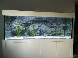 aquarium senker 33098 wohnzimmer becken