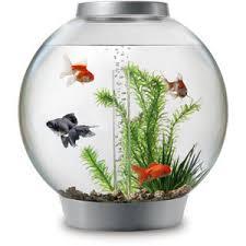 BiOrb Aquarium Fish Tank Kit with Light Silver available o