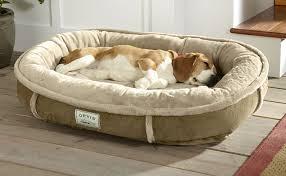 tempur pedic wraparound dog bed from orvis socialpaw