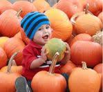 Pumpkin Patches In Milton Wv by Definitely Taking A To The Pumpkin Patch In His Costume Fall