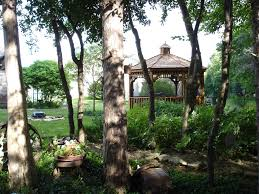 Free Images : Tree, Forest, Canopy, Jungle, Backyard, Gazebo ... Garden Design With Backyard Landscaping Trees Backyard Fruit Trees In New Orleans Summer Green Thumb Images With Pnic Park Area Woods Table Stock Photo 32 Brilliant Tree Ideas Landscaping Waterfall Pond Stock Photo For The Ipirations Shejunks Backyards Terrific 31 Good Evergreen Splendid Grass Scenic Touch Forest Monochrome Sumrtime Decorating Bird Bath Fountain And Lattice Large And Beautiful Photos To Select Best For