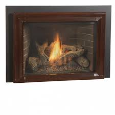 10 Best Gas Fireplace Insert Reviews Your Cozy Home 2018