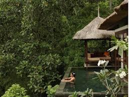 100 Ubud Hanging Garden Bali S Of Wandernesia