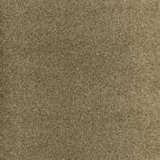 trafficmaster dilour color bark texture 18 in x 18 in carpet