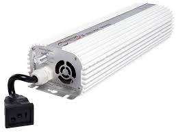 1000 Watt Hps Bulb And Ballast by Quantum Digital Dimmable Ballast 1000w For Sale Reviews