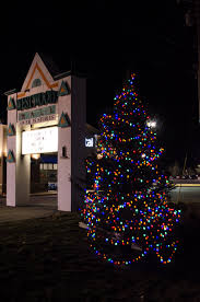 Shopko Christmas Tree Storage by Another Successful Catch The Christmas Spirit Tree Lighting
