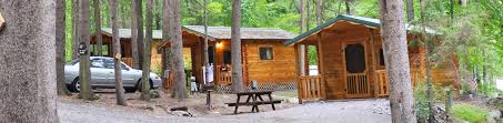 How Much Is A Nice Log Cabin Amazing Deluxe Home Design