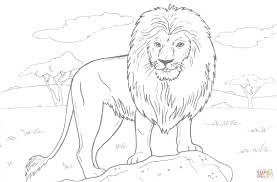 Click The African Lion Coloring Pages