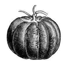 pumpkin vintage clipart tif