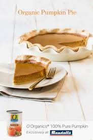 Homemade Pumpkin Pie With Molasses by You Must Try This Homemade Pumpkin Pie Recipe Featuring O