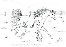 Detailed Horse Coloring Pages Horses Of For