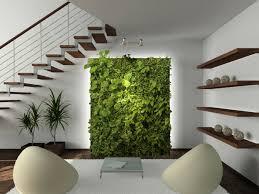 mit zimmerpflanzen das zuhause dekorieren 60 beispiele