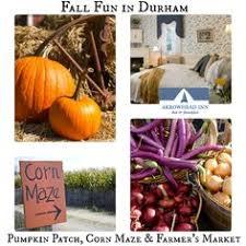 Pumpkin Patch Durham North Carolina by Green Level Gourd Farm October Festival Apex Fall Events