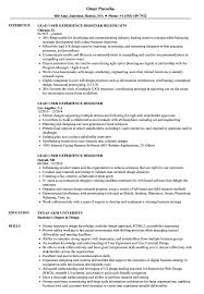 Download Lead User Experience Designer Resume Sample As Image File