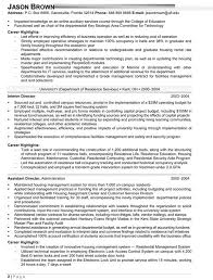 Resume Example Vice President