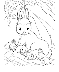 Print Coloring Page And Book Rabbit For Kids Of All Ages Updated